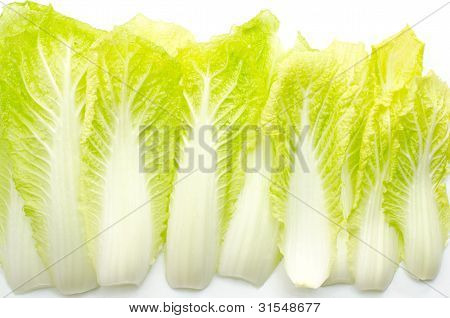 Chinese cabbag leaf
