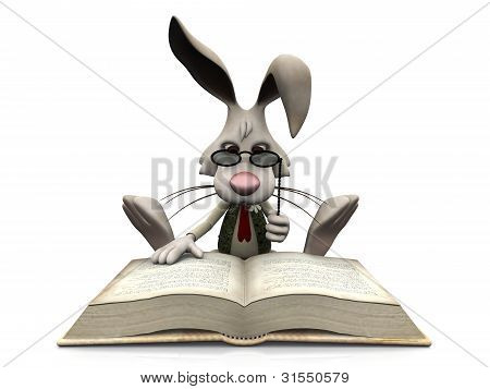 Cartoon Rabbit Reading Big Book.