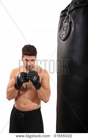 Boxer Workout