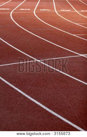 Lines Field