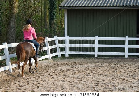 Horse Rider Girl In The Manege