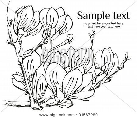 Card Design With Magnolia