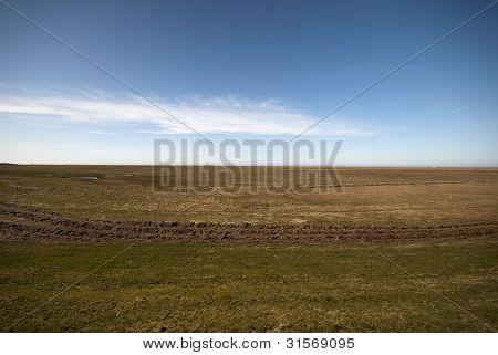 Tidal Landscape