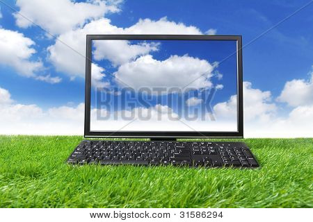 Monitor And Keyboard On Green Grass