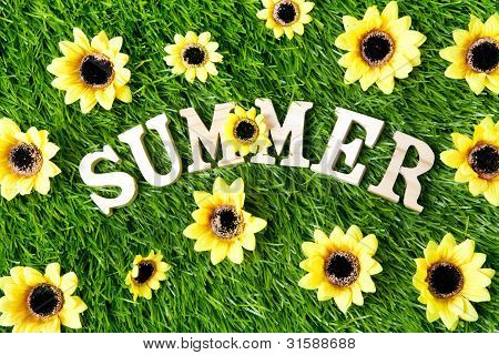 Summer Sign Background