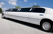 picture of limousine  - White Stretch limousine waiting for guests to arrive - JPG