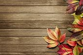 Autumn Background With Copy Space