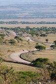 stock photo of long winding road  - A beautiful winding road through the open plains and acacia woodlands of the Serengeti - JPG