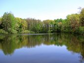 stock photo of mckenzie  - Peaceful summer morning on a pond in McKenzie - JPG