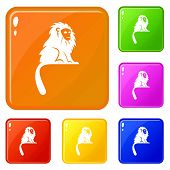 Hairy Monkey Icons Set Collection Vector 6 Color Isolated On White Background poster