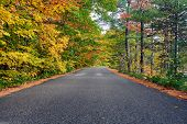 Autumn scene with road in in White Mountain National Forest, New Hampshire, USA. Fall in New England poster