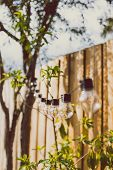 Trendy Globe String Lights Outdoor Hanging From Trees In Private Garden poster