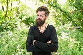 His Beard Style Looks Great. Brutal Hipster Wearing Fashionable Mustache And Beard Hair Style. Beard poster