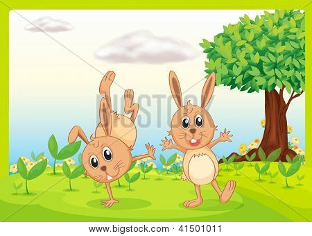Illustration of dacing rabbits in a beautiful nature
