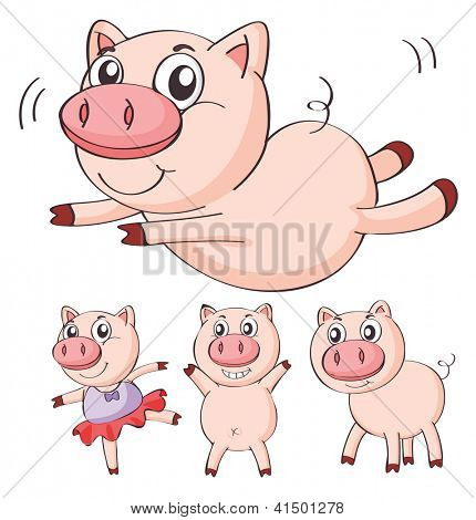 Illustration of pigs on a white background