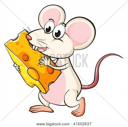 Illistration of a mouse eating cheese on a white background
