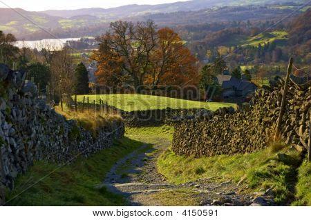 Sunny Autumn Lane
