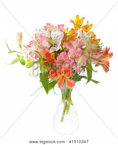 Bouquet of Alstroemeria flowers isolated on white background.