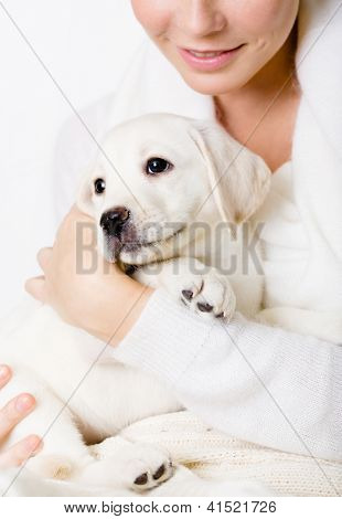 Closeup of white puppy on the hands of woman in white sweater on white background