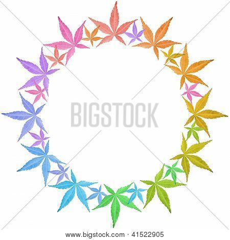 Circle Frame Of Colorful Leaves Isolated On White.