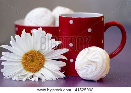 Red polka dot cup of tea marshmallow and chamomile