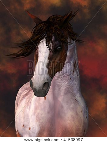 Equine Horse Portrait Greeting Card / Wall Art, Website