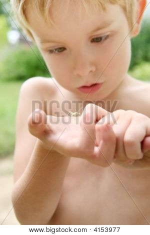 Young Boy Holding An Insect In The Palm Of His Hand
