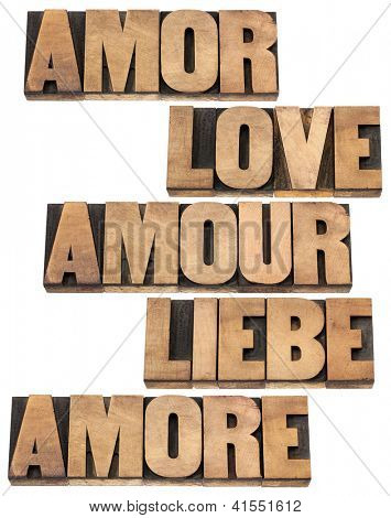 love word in 5 languages (English, Spanish, German, French and Italian) - a collage of isolated text in vintage letterpress wood type printing blocks,