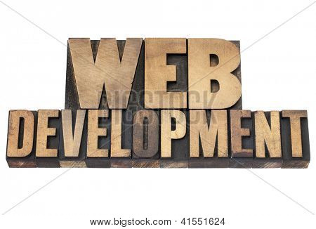web development   - isolated text in vintage letterpress wood type printing blocks