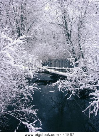 Snofall And Creek (view 4)
