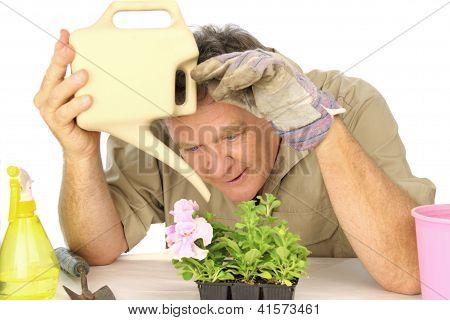 engagierten Gärtner