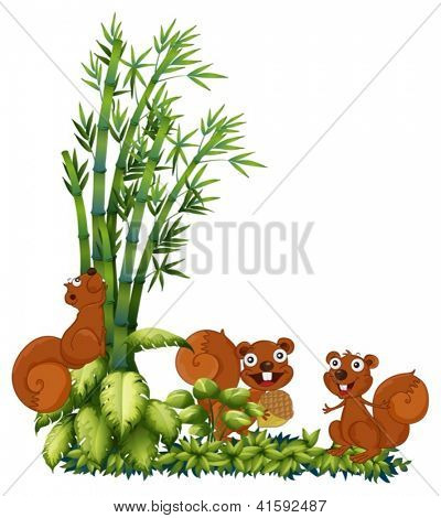 Illustration of happy squirrels on a white background