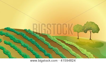 Illustration of a farm in the hills