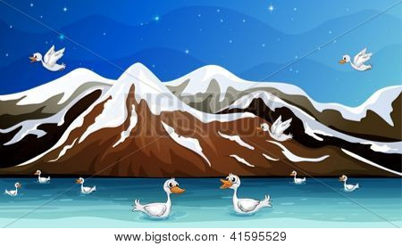 Illustration of ducks and water in a beautiful nature