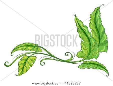 Illustration of a green border on a white background