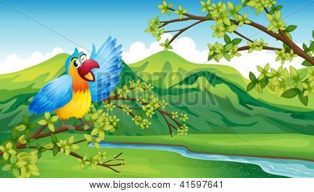 Illustration of a bird on a branch of a tree