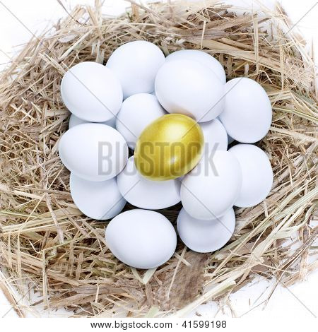 Golden Egg In Common Nest