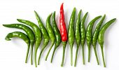 stock photo of chillies  - Outstanding red pepper among green pepper  - JPG