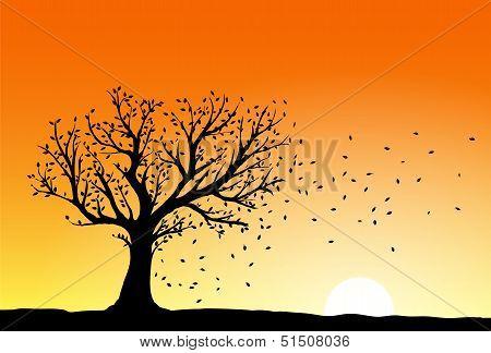 Autumn Tree Silhouette
