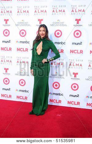 LOS ANGELES - SEP 27:  Fernanda Romero at the 2013 ALMA Awards - Arrivals at Pasadena Civic Auditorium on September 27, 2013 in Pasadena, CA