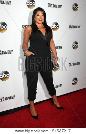 LOS ANGELES - SEP 28:  Sara Ramirez at the Grey's Anatomy 200th Show Party at The Colony on September 28, 2013 in Los Angeles, CA