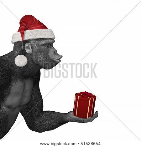 Gorilla Offering Gift