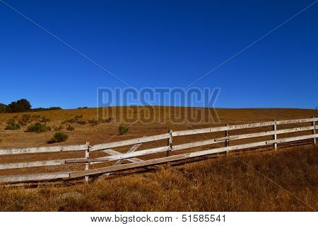Friendly Old Fence