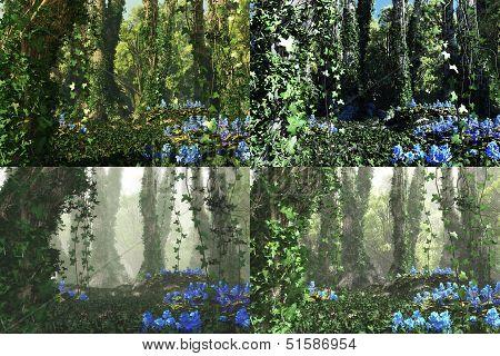 Deep Forest, 3D Computer Graphics