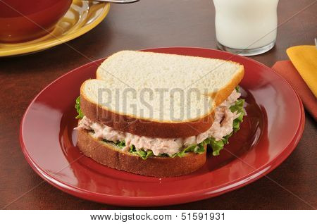 Fresh Tuna Sandwich