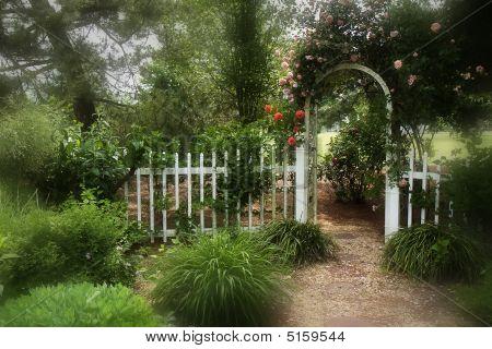 Dreamy Garden