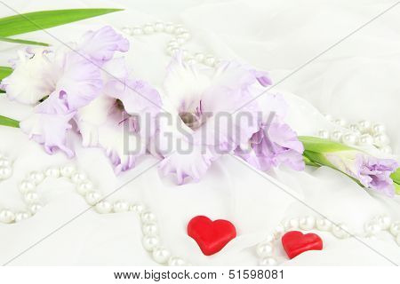 Beautiful gladiolus flower on white fabric background