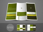 pic of newsletter  - Professional business three fold flyer template - JPG