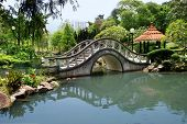 picture of hong kong bridge  - park with a bridge in hong kong  - JPG