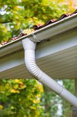 image of downspouts  - Marple leaves in gutter fall time vertical format - JPG